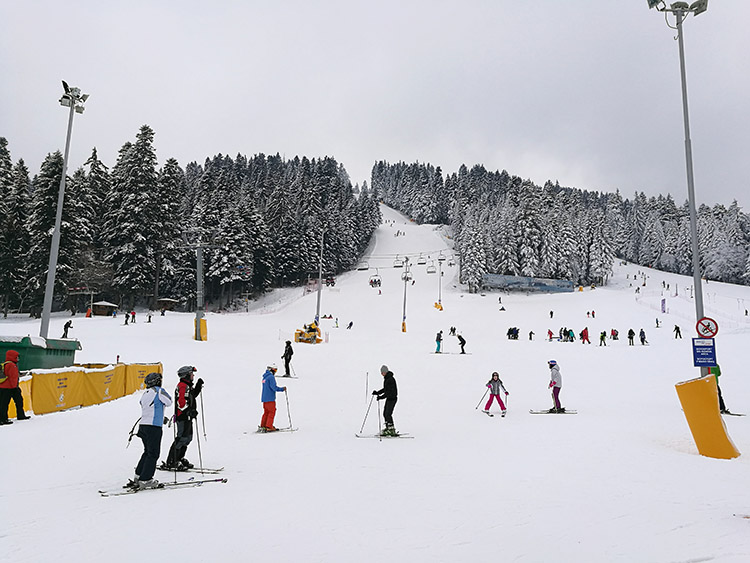 Most beginners start of in the Sitnyakovo ski center, as there you'll find the most green slopes in one place.
