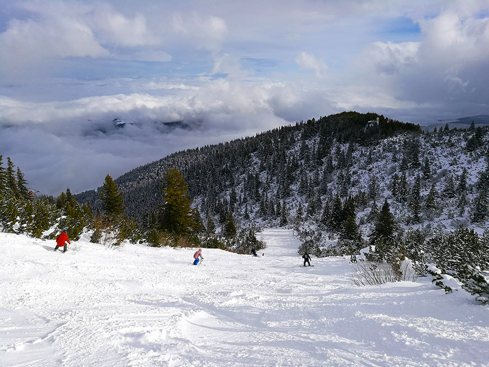 "The black Fon Fon ski slope is designated as ""Freeride only"". This means it's never groomed and perfect on a powder day."