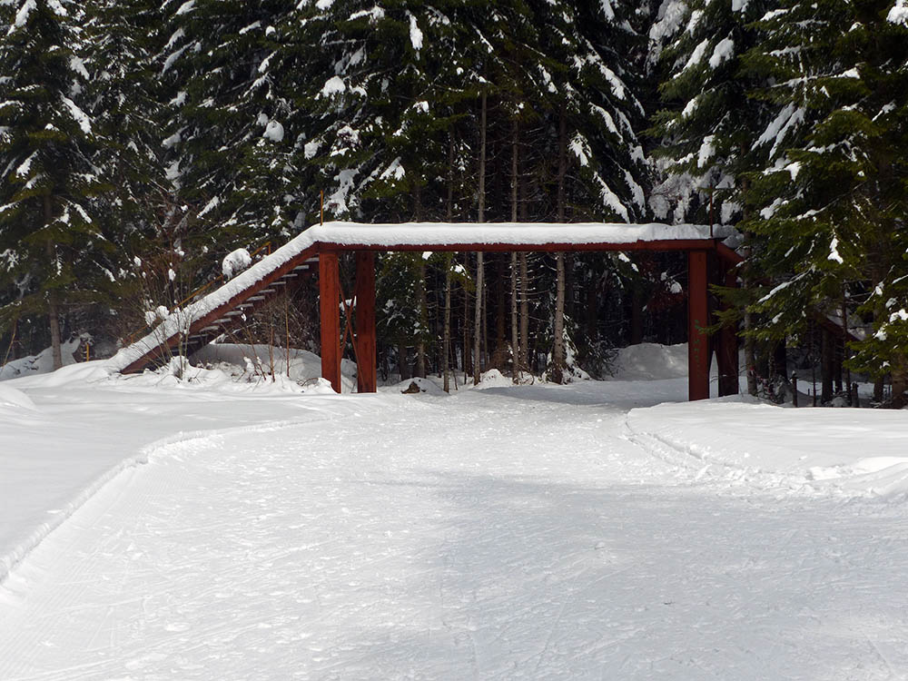 cross country skiing Borovets