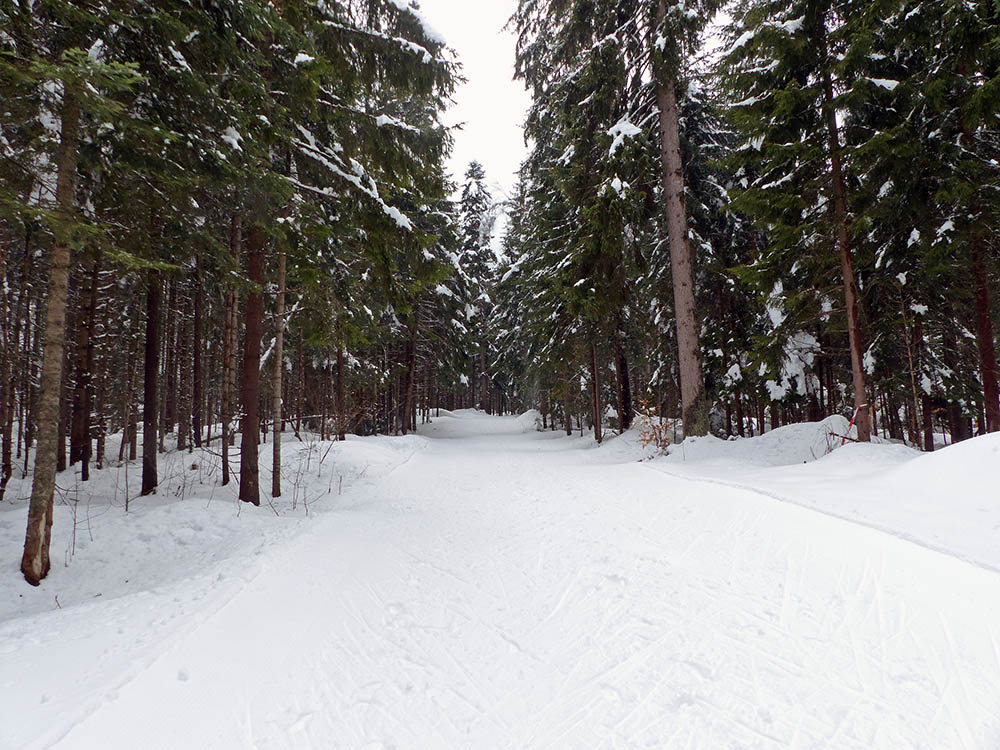 cross country skiing track